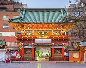 Бизнес-туры в Японию