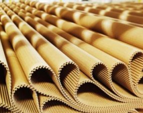 Целлюлозно-бумажный завод